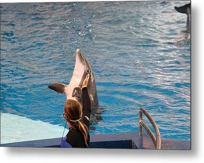 Dolphin Show - National Aquarium In Baltimore Md - 1212147 Metal Print