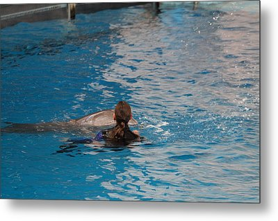 Dolphin Show - National Aquarium In Baltimore Md - 1212223 Metal Print