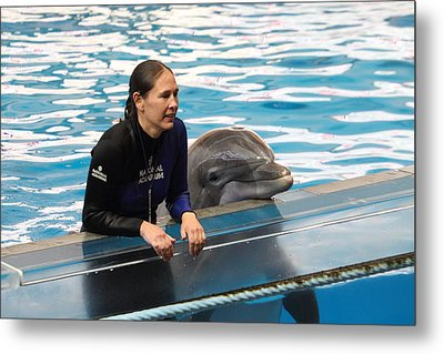 Dolphin Show - National Aquarium In Baltimore Md - 1212230 Metal Print by DC Photographer
