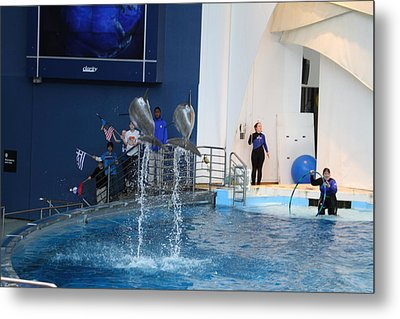 Dolphin Show - National Aquarium In Baltimore Md - 121288 Metal Print by DC Photographer