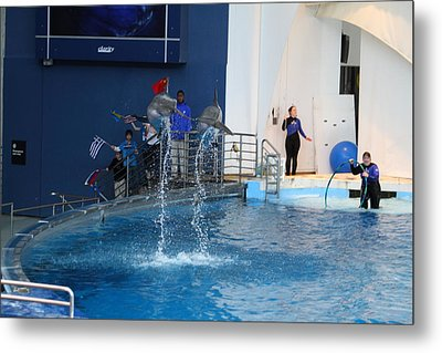 Dolphin Show - National Aquarium In Baltimore Md - 121289 Metal Print by DC Photographer