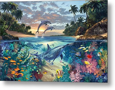 Dolphins Playground Metal Print by Steve Read