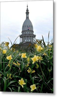 Dome Through The Daffodils Metal Print