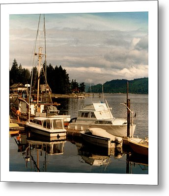 Domino At Alderbrook On Hood Canal Metal Print