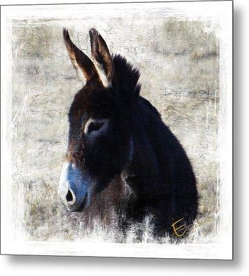 Donkey Delight Metal Print
