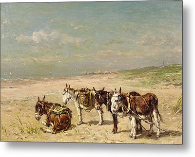 Donkeys On The Beach Metal Print by Johannes Hubertus Leonardus de Haas
