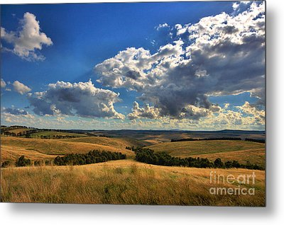 Donny Brook Hills Metal Print