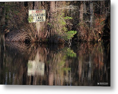 Don't Feed The Alligators Metal Print by Phil Mancuso