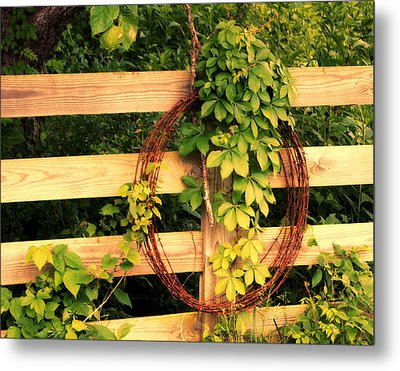 Don't Fence Me In Metal Print by Cricket Hackmann