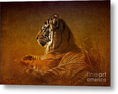 Don't Wake A Sleeping Tiger Metal Print by Betty LaRue