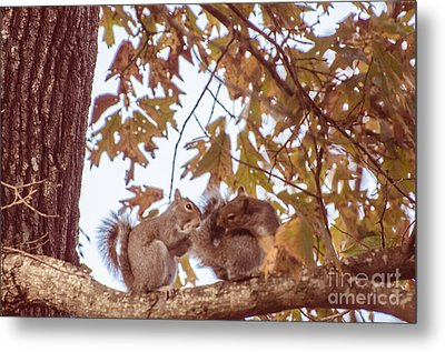 Don't Worry Be Happy Metal Print by Donna Brown