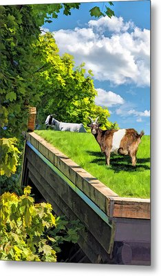 Door County Al Johnsons Swedish Restaurant Goats Metal Print by Christopher Arndt