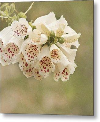 Dots-foxglove Flower Metal Print