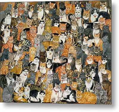 Double Cat Spread Metal Print