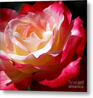 Double Delight Rose Metal Print by Kaye Menner
