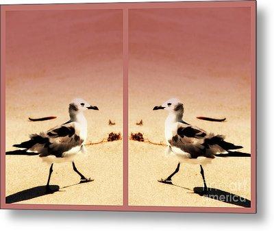 Double Gulls Collage Metal Print by Susanne Van Hulst