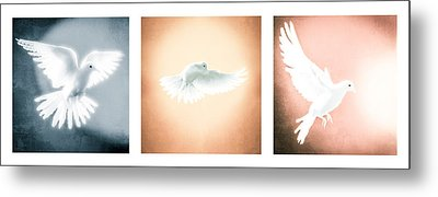 Dove In Flight Triptych Metal Print by YoPedro