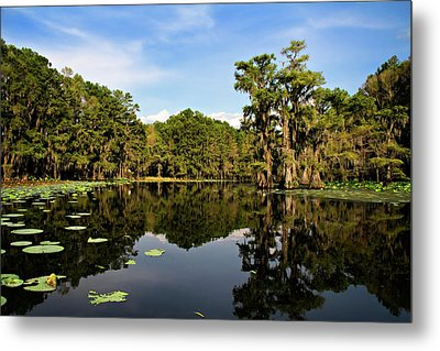 Down In The Bayou Metal Print by Lana Trussell