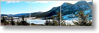 Down In The Valley Triptych Metal Print by Barbara Griffin