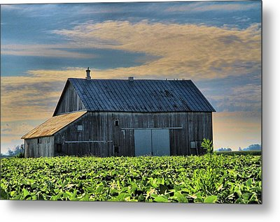Down On The Farm Metal Print by Dan Sproul
