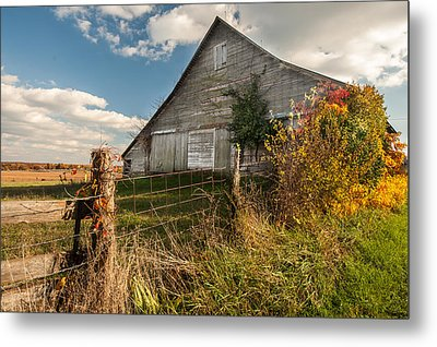 Down On The Farm Metal Print by Gregory Ballos
