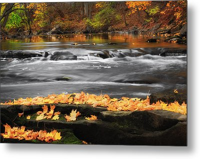 Down On The River Metal Print by Bill Wakeley