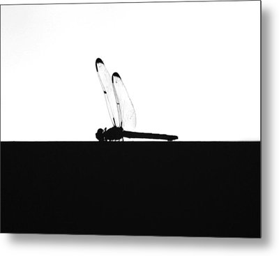 Dragonfly Silhouette Metal Print by Maggy Marsh