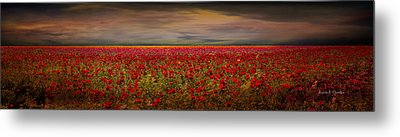 Drama Over The Flower Fields Metal Print by Angela A Stanton