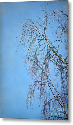 Dream Blue Metal Print by Evelina Kremsdorf