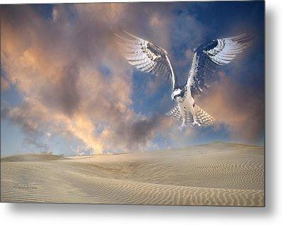 Dream Hawk Metal Print by Georgiana Romanovna