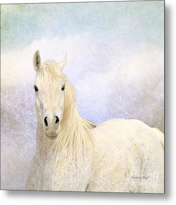 Metal Print featuring the photograph Dream Horse by Karen Slagle