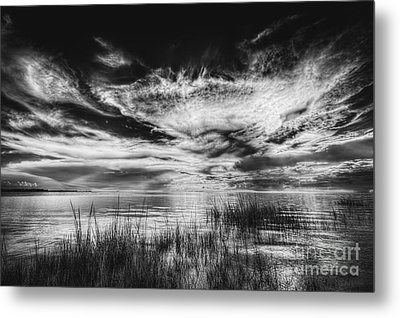 Dream Of Better Days-bw Metal Print