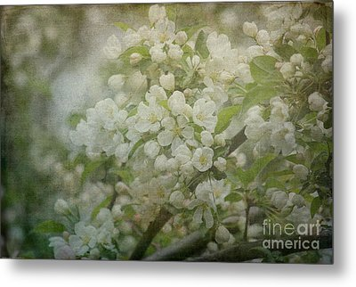 Dream Of Spring Metal Print