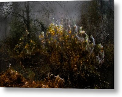 Dream Weavers Metal Print