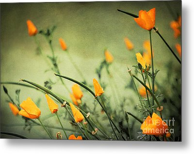 Metal Print featuring the photograph Dreaming Of Spring by Ellen Cotton