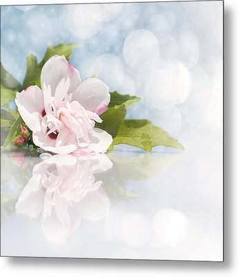 Dreamy Althea Metal Print by Sari ONeal