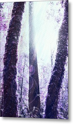 Dreamy Forest Metal Print by Nicole Swanger