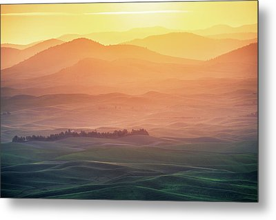 Dreamy Morning Metal Print by Naphat Chantaravisoot