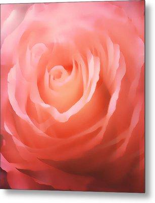 Dreamy Pink Rose Metal Print