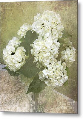 Dreamy Vintage Cottage Chic White Hydrangeas - Shabby Chic Dreamy White Floral Art  Metal Print