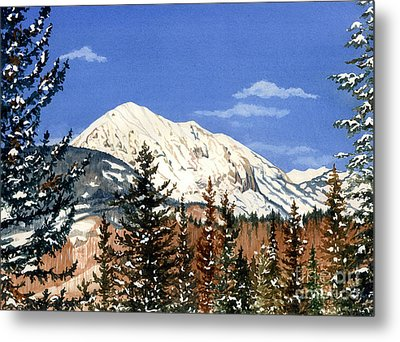 Dressed For Winter Metal Print by Barbara Jewell