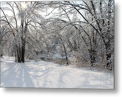 Metal Print featuring the photograph Dressed In Snow by Nina Silver