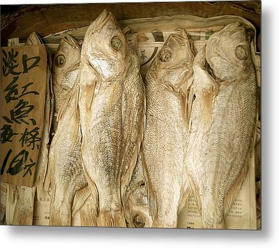 Metal Print featuring the photograph Dried Fish by Colleen Williams