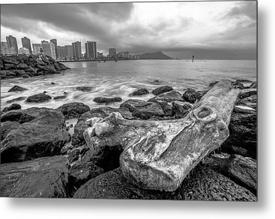 Metal Print featuring the photograph Drift Wood by Robert  Aycock