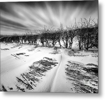 Drifting Snow Metal Print by John Farnan