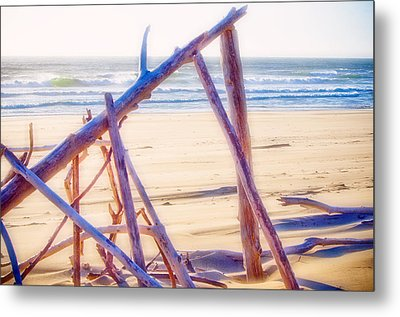 Metal Print featuring the photograph Driftwood 2 by Adria Trail