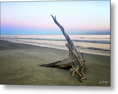 Driftwood At Dusk Metal Print by Phill Doherty