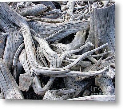 Driftwood Metal Print by Gerry Bates