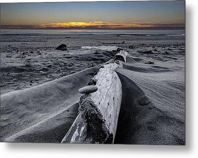 Driftwood In The Sand Metal Print by Debra and Dave Vanderlaan