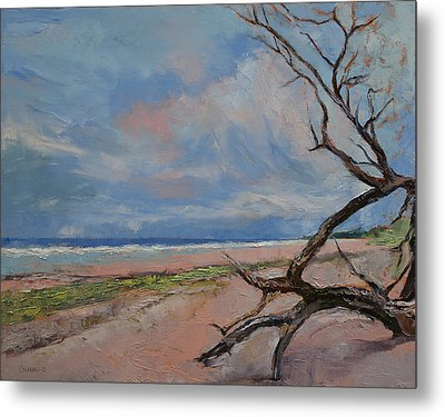 Driftwood Metal Print by Michael Creese